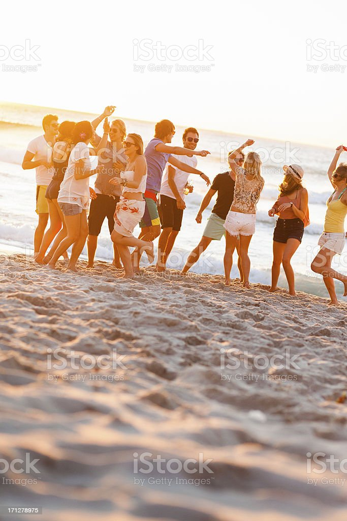 Group Of Young People At Beach Party stock photo