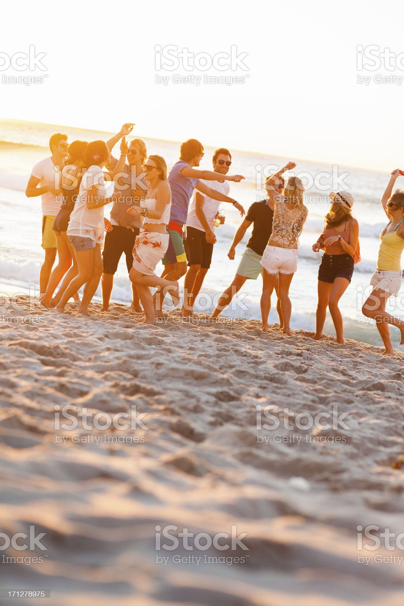 Group Of Young People At Beach Party royalty-free stock photo