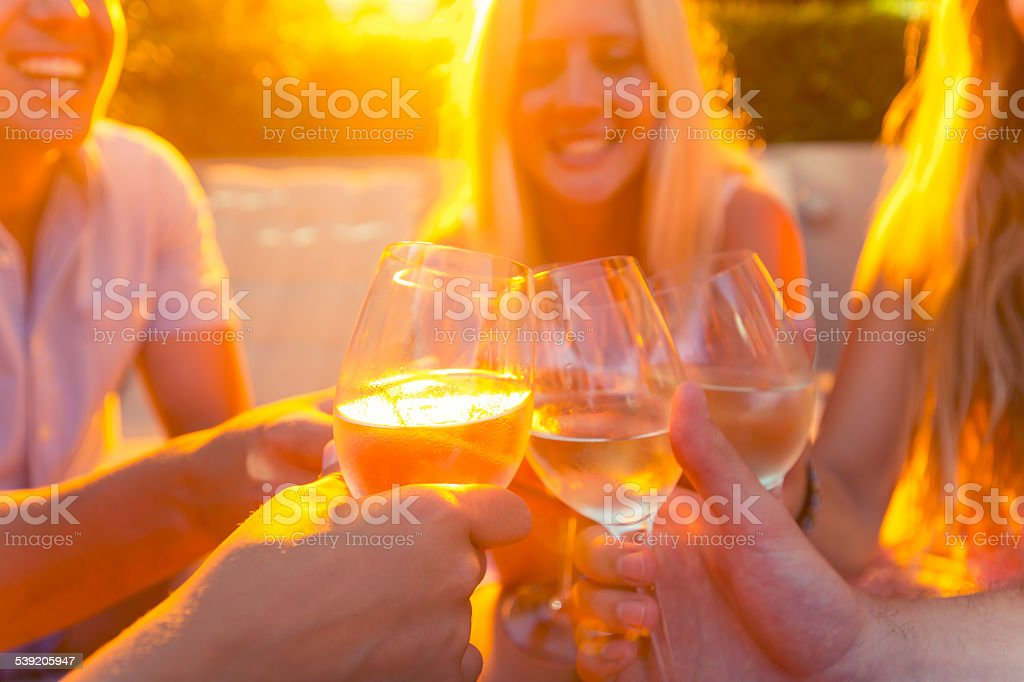 Group of young people toasting with wine glasses. stock photo