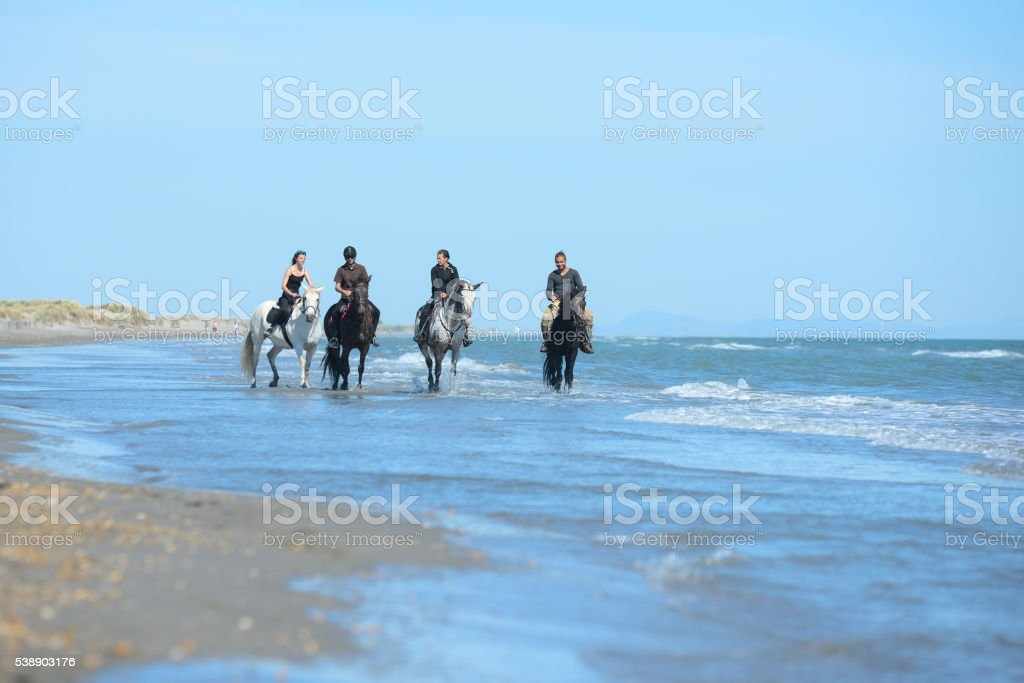 group people riding horses on beach in sunny summer day stock photo