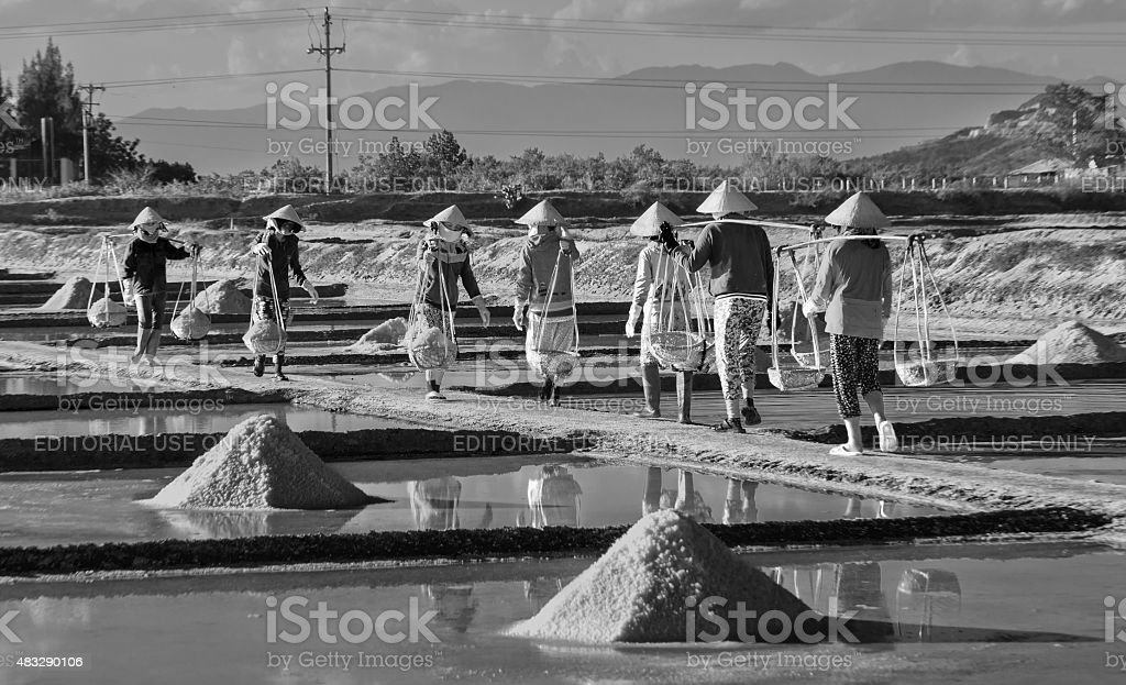 Group salt farmers salt burden on salt pans stock photo