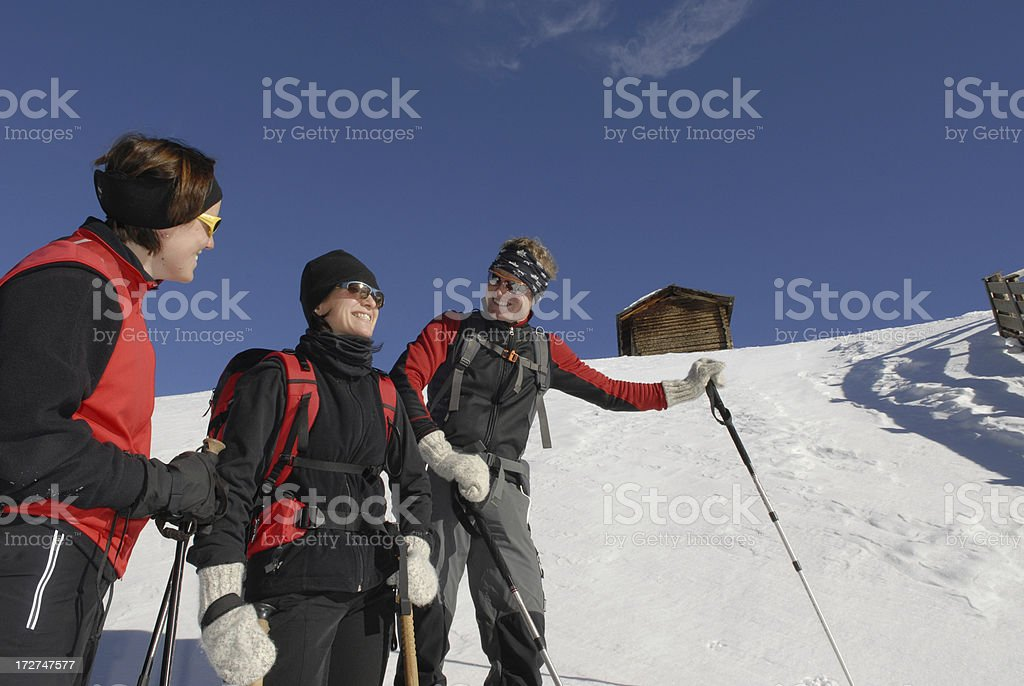 Group Snowshoeing royalty-free stock photo