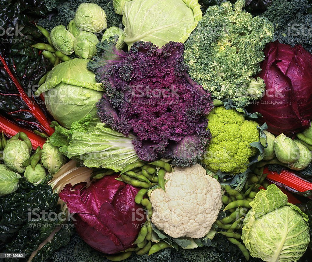 Grouping of cruciferous vegetables stock photo