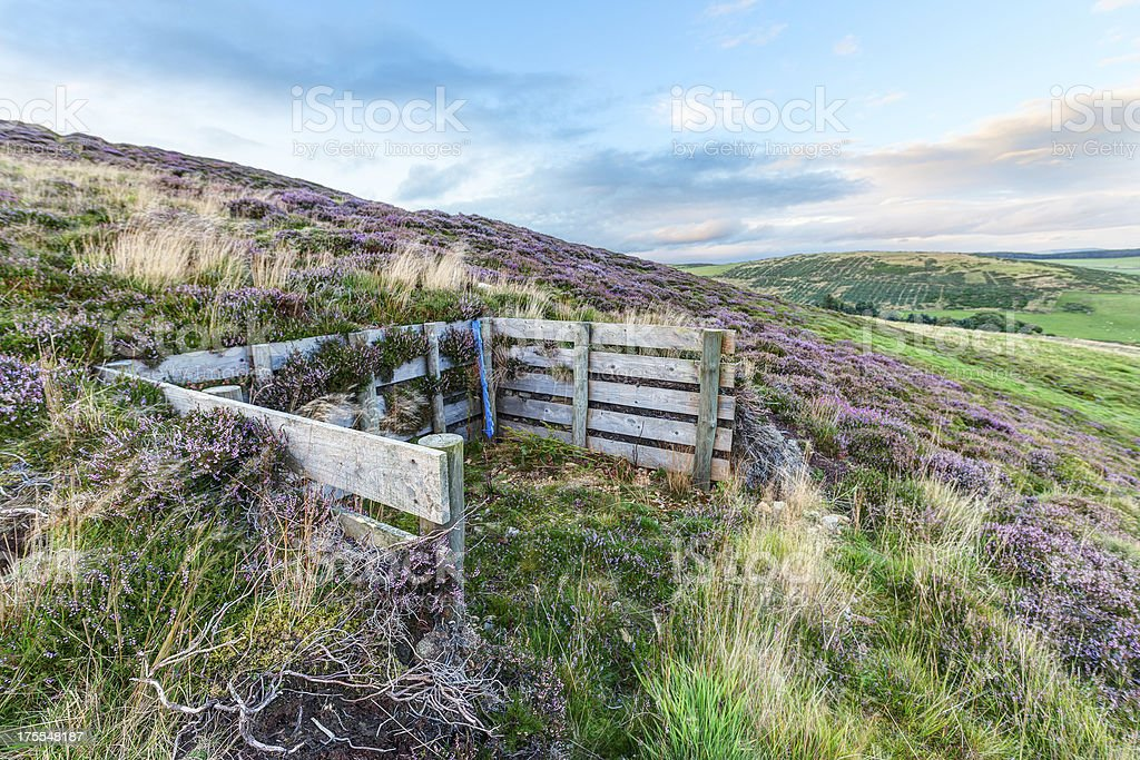 Grouse moor at day's end stock photo