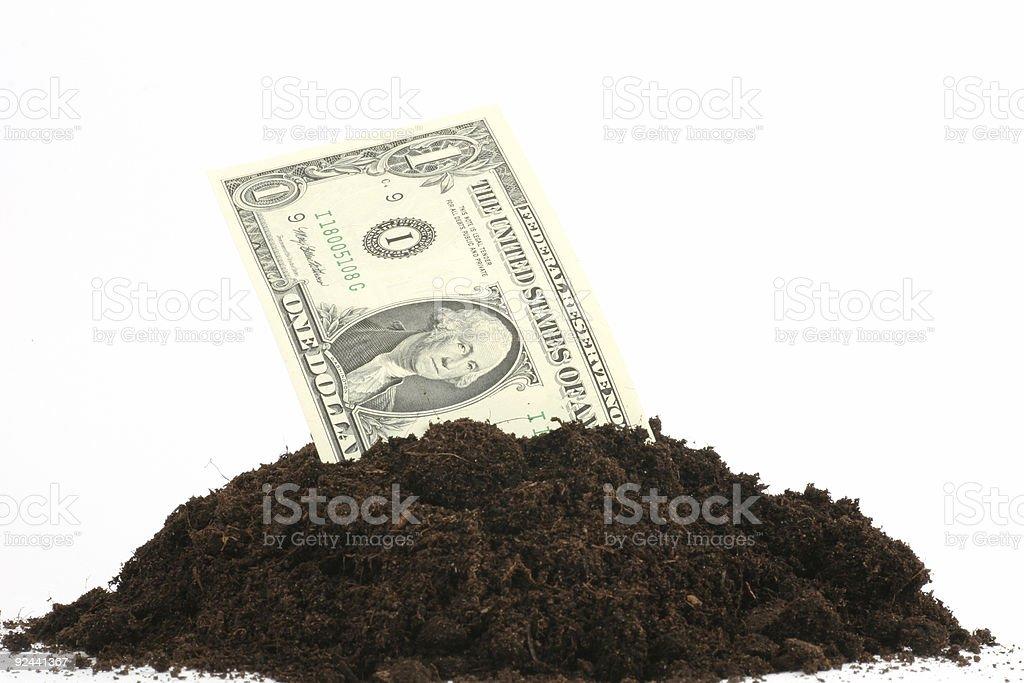 Grow money...grow! royalty-free stock photo