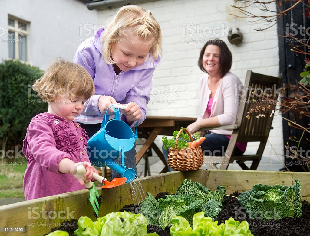 grow your own royalty-free stock photo