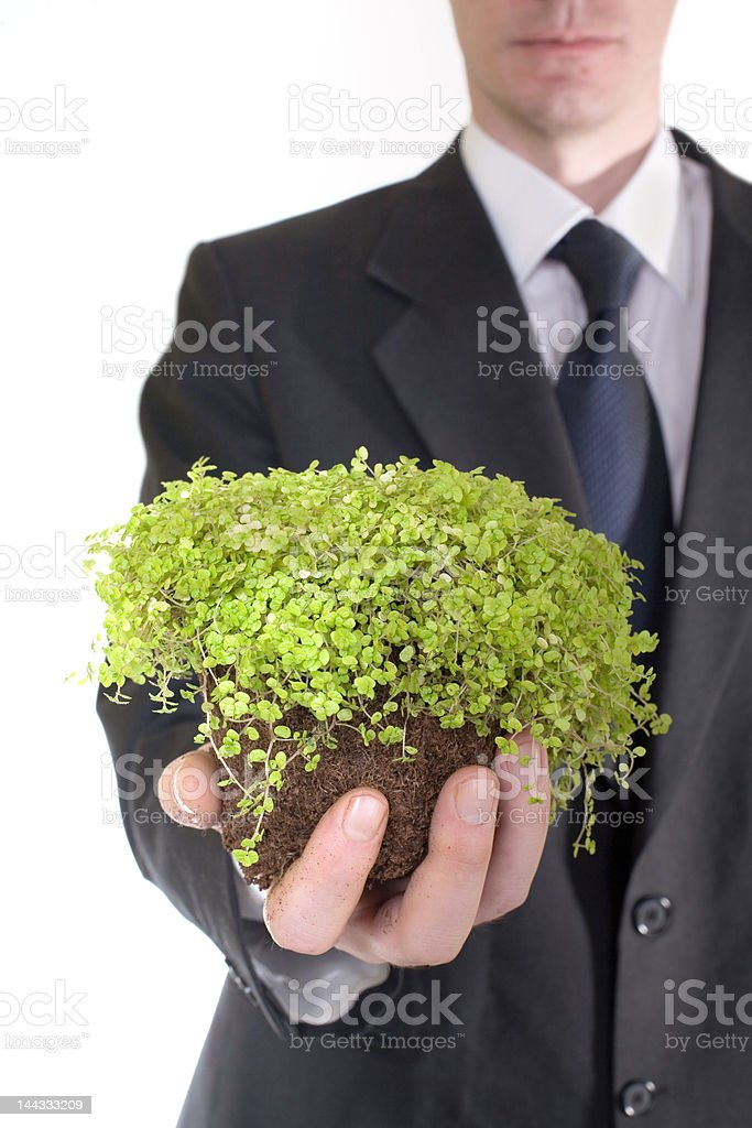 growing business royalty-free stock photo