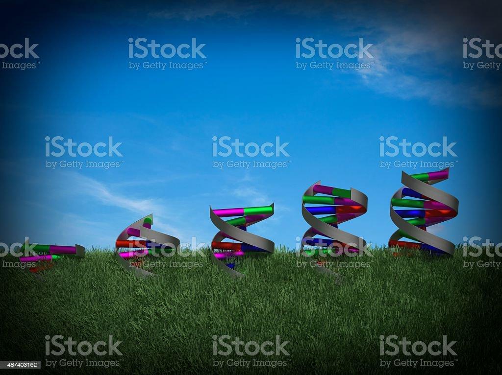 Growing DNA stock photo