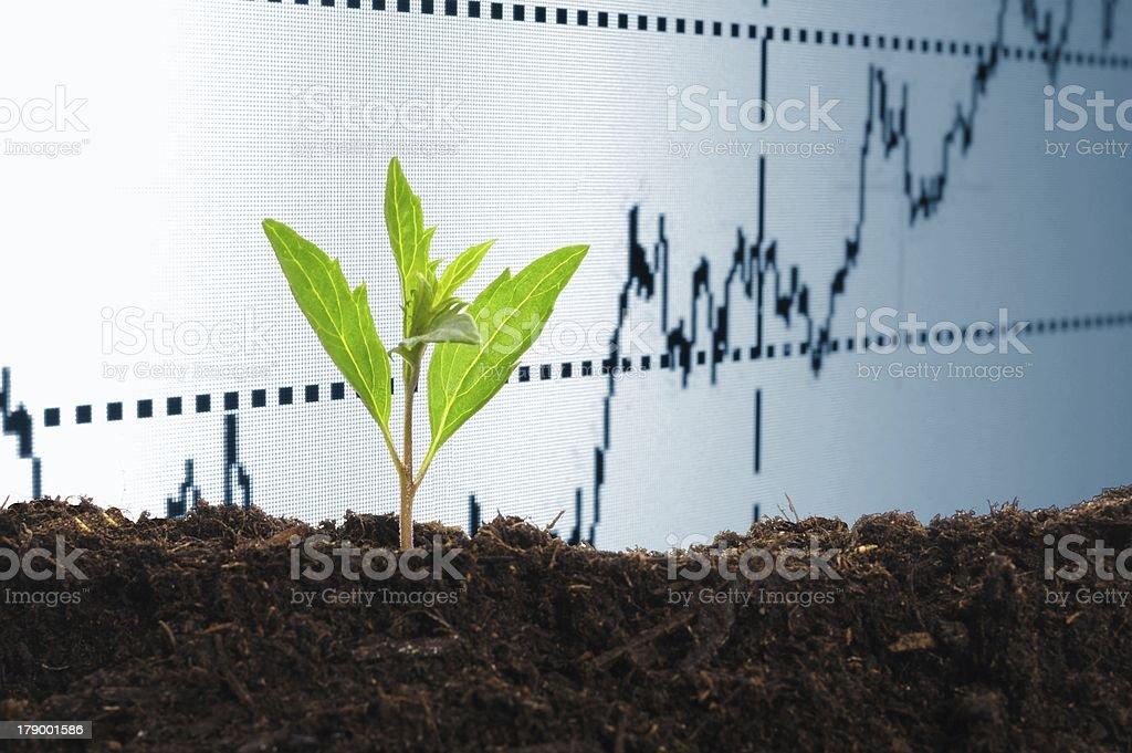 growing economy stock photo