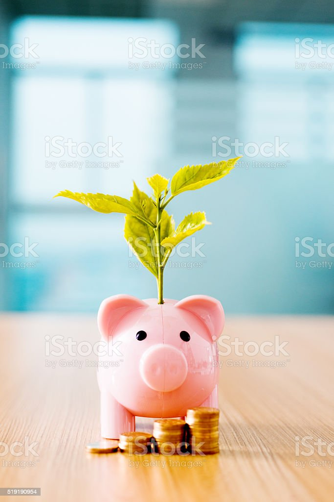 Growing investments concept stock photo