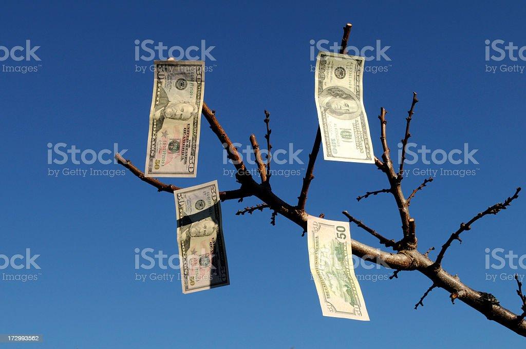Growing money 2 royalty-free stock photo