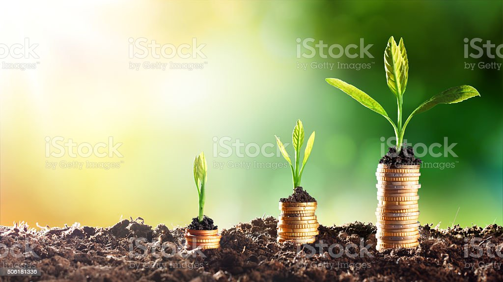 Growing Money - Chart In Rise stock photo