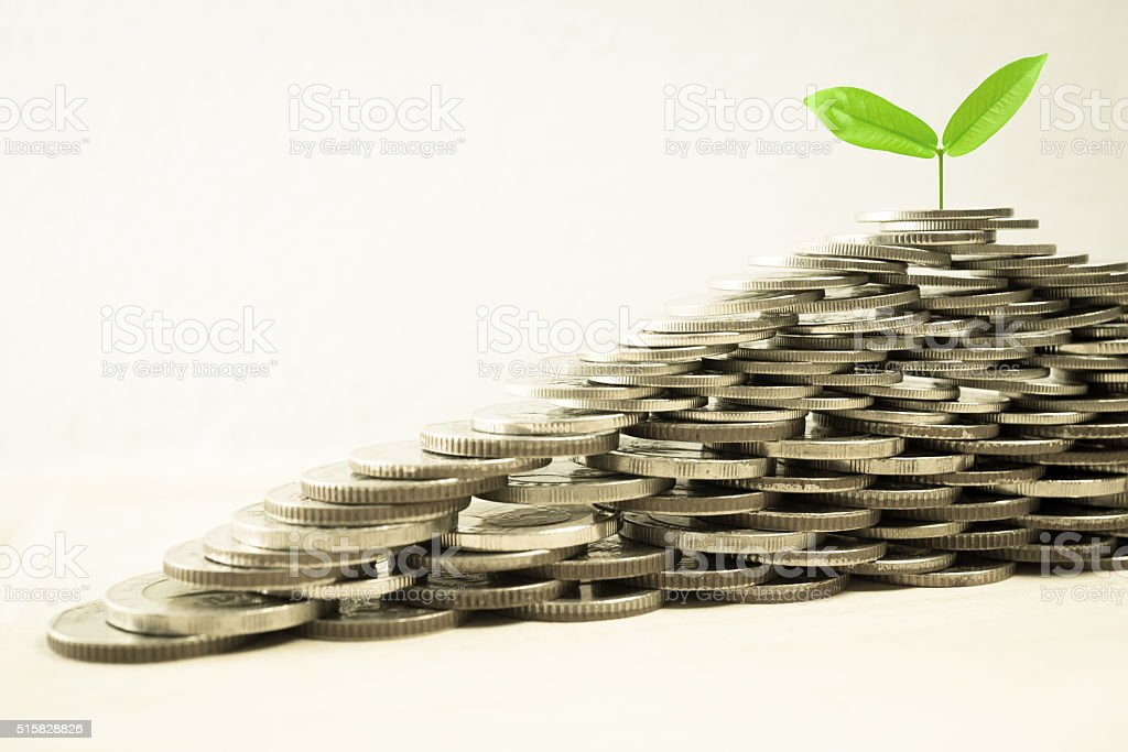 Growing plant on pile of coin money stock photo