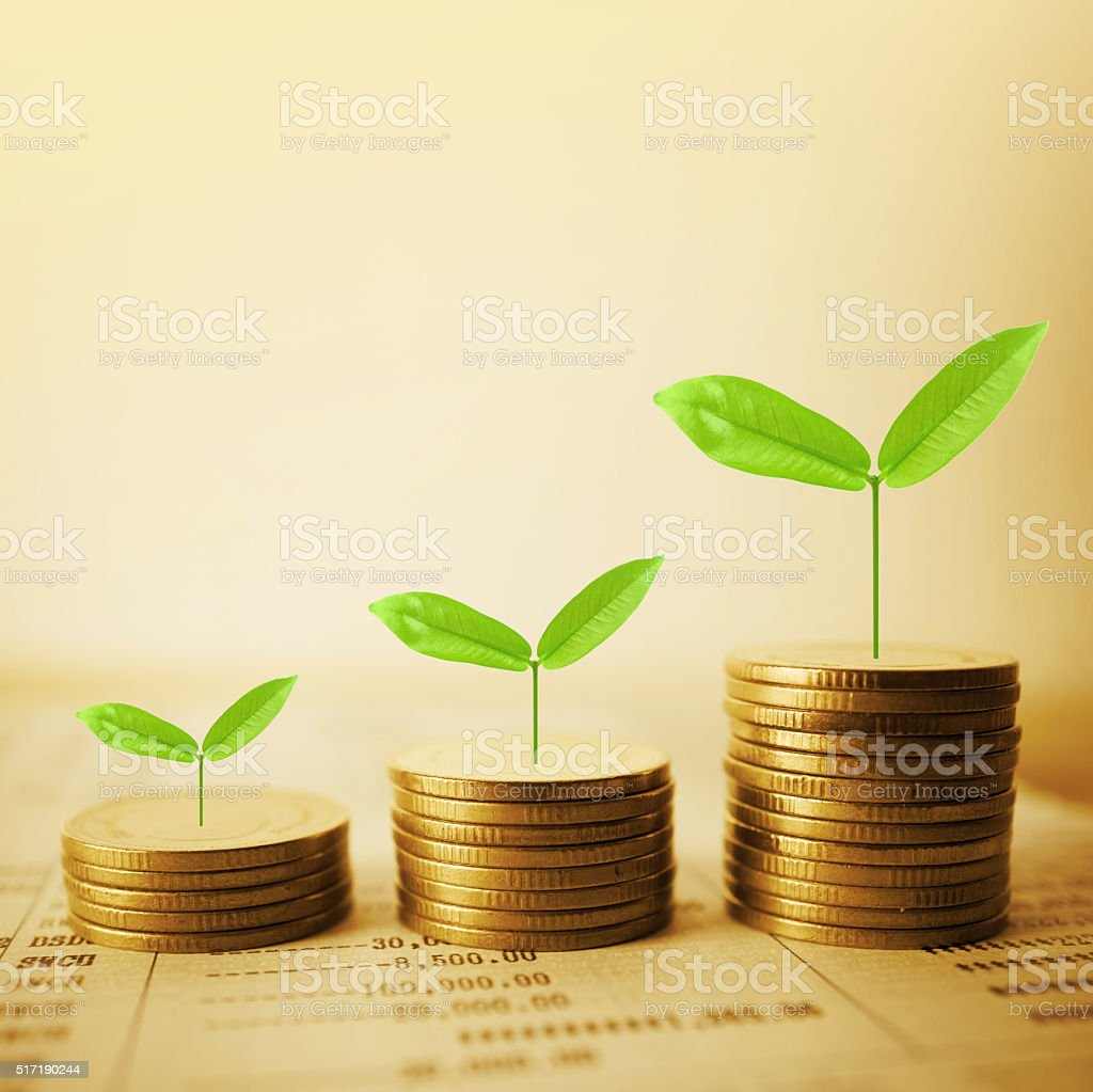 Growing plant on row of coin money for finance  concept stock photo