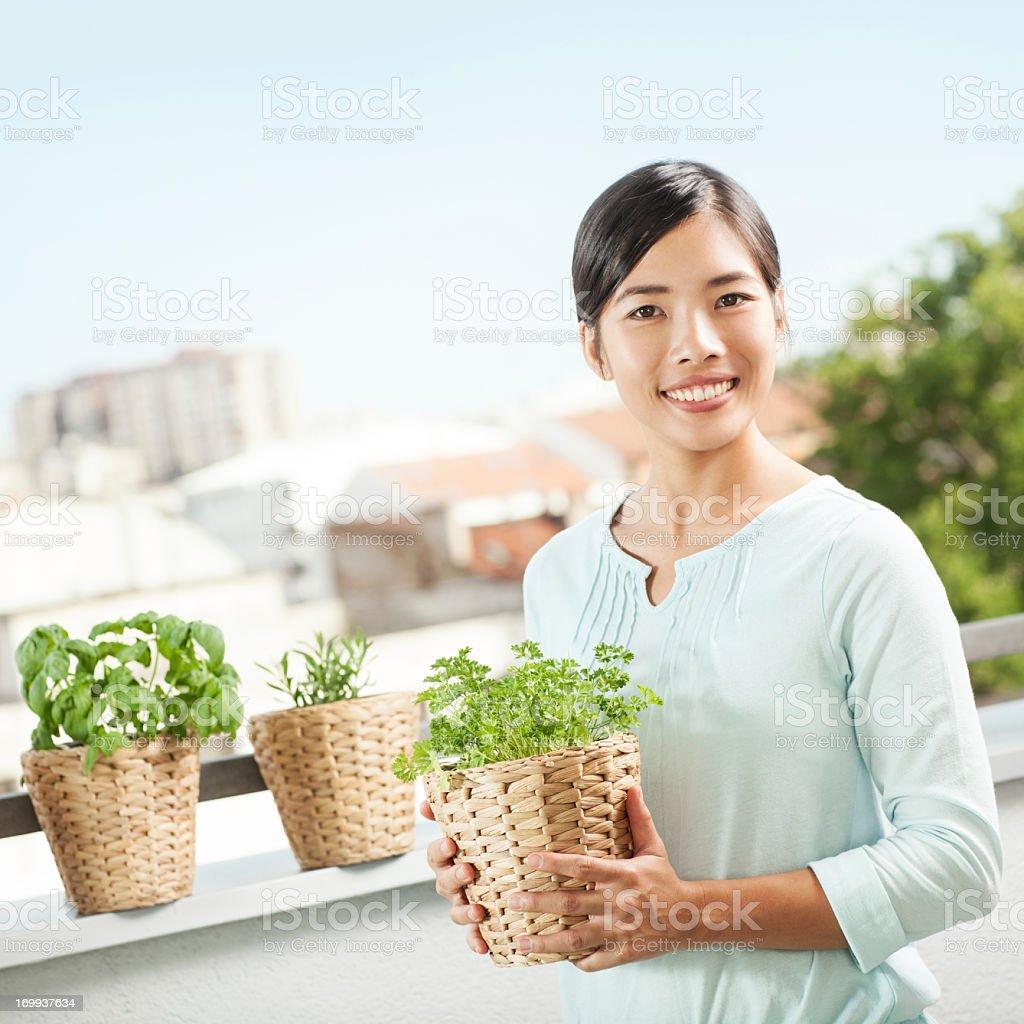 Growing Plants stock photo