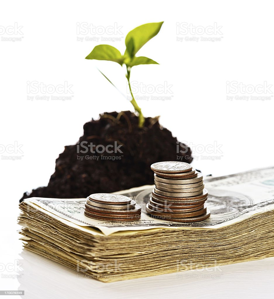 Growing seedling with pile of cash royalty-free stock photo