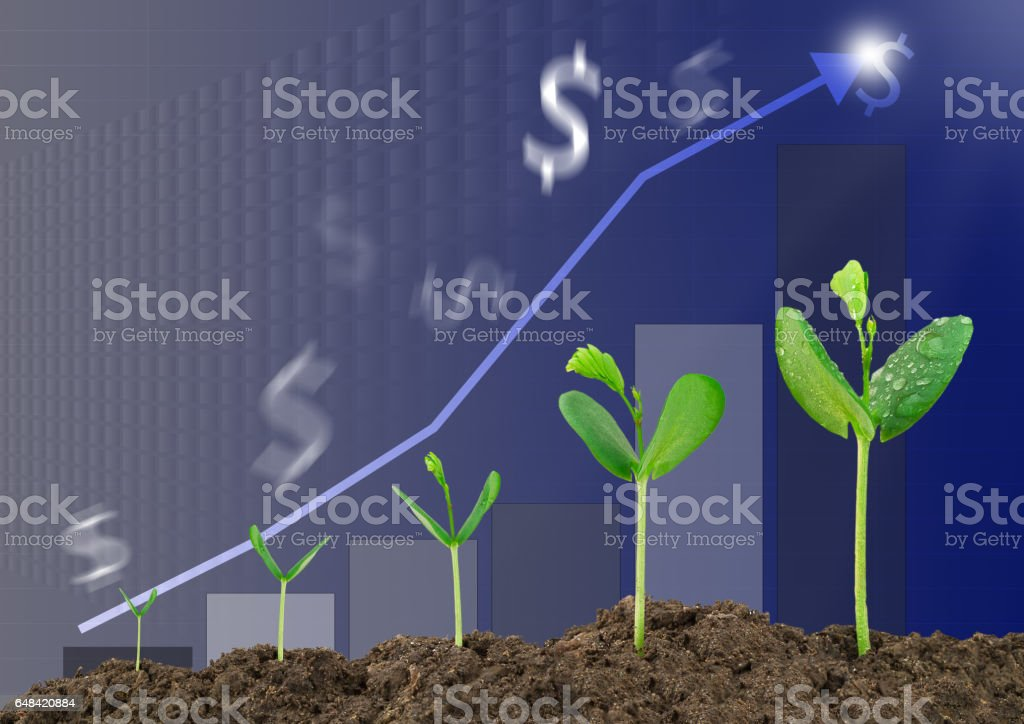 Growing sprouts, bar graph, blurred dollar sign background, business concept stock photo