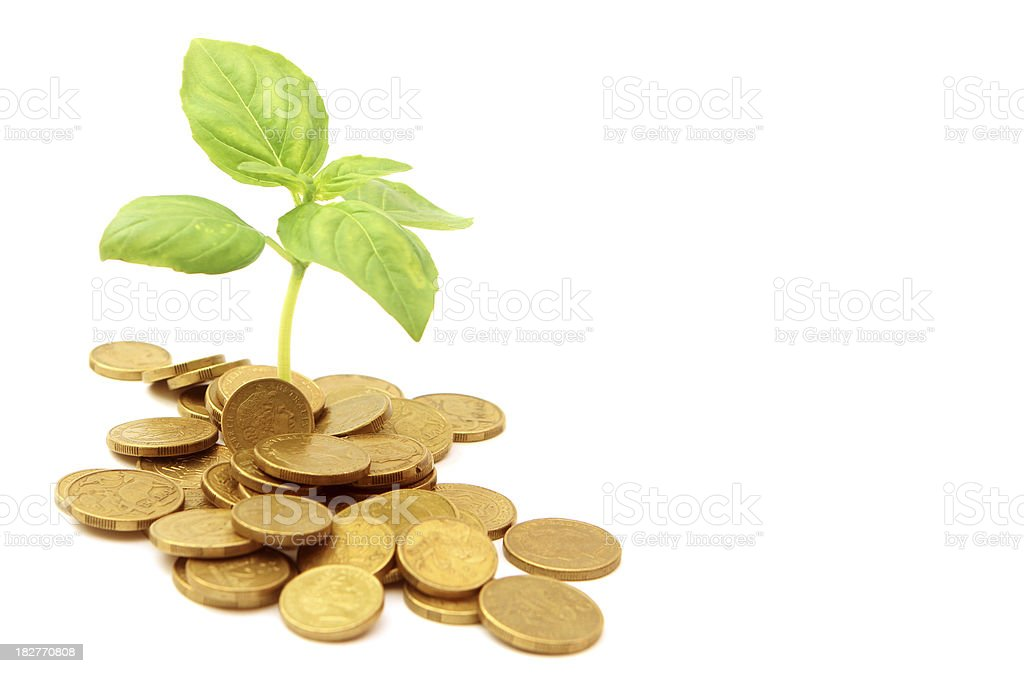 Growing Wealth royalty-free stock photo