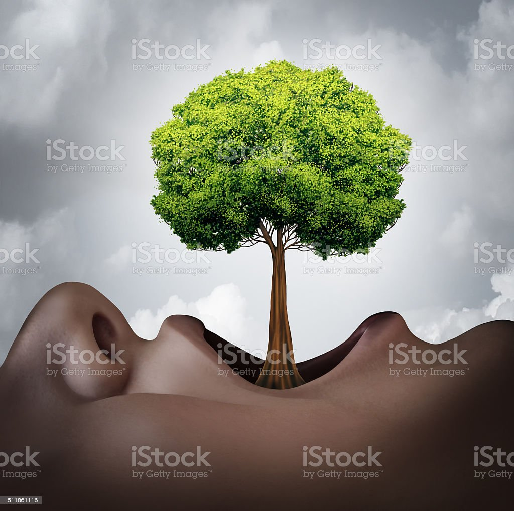 Growing Your Vocabulary stock photo