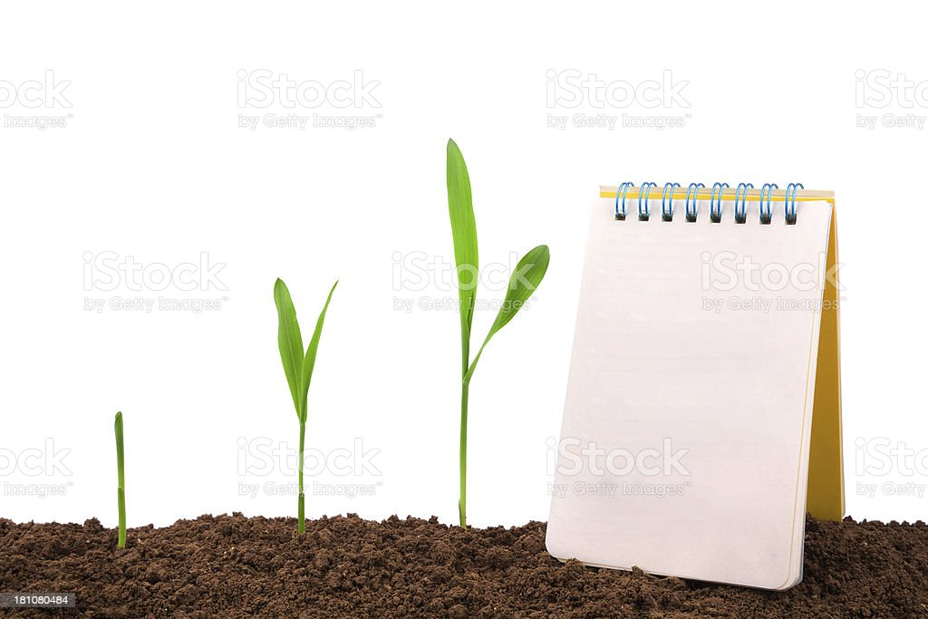 growth diary and history:plant sequence & notebook royalty-free stock photo
