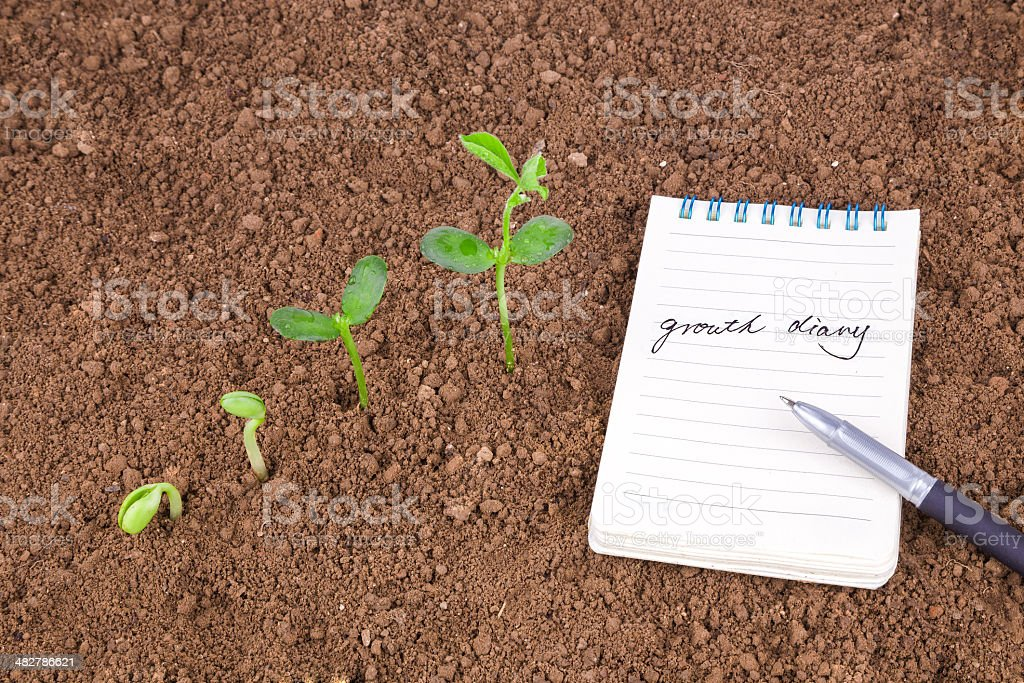 growth diary and history:plant sequence with note book royalty-free stock photo