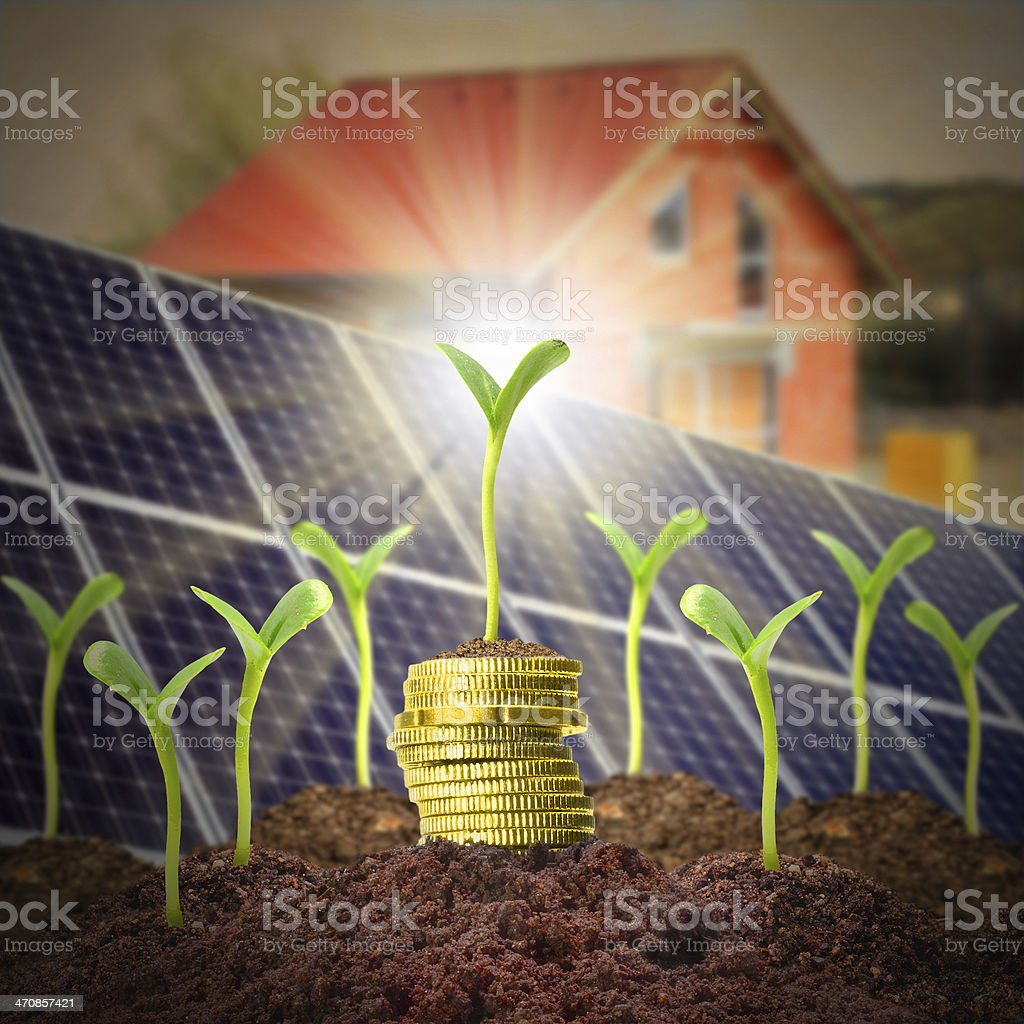 Growth of investments. stock photo