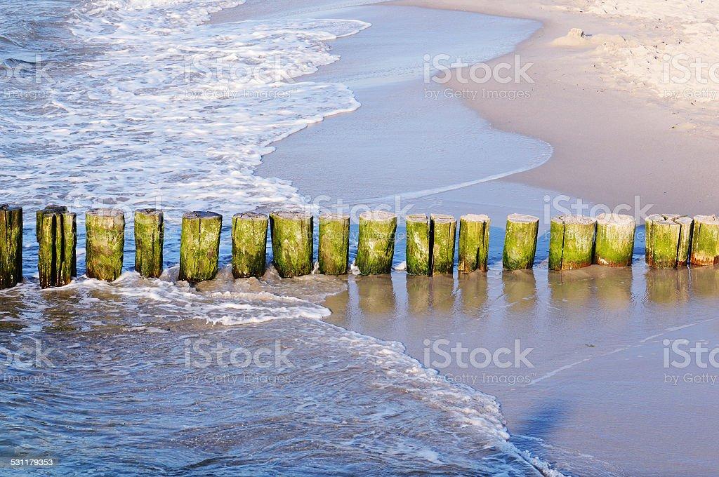 groynes at beach of Darss (Germany) stock photo