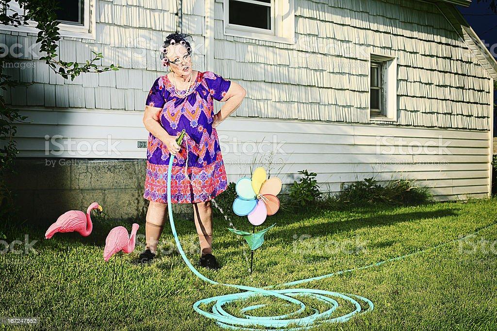 Grumpy Granny Watering the Lawn stock photo