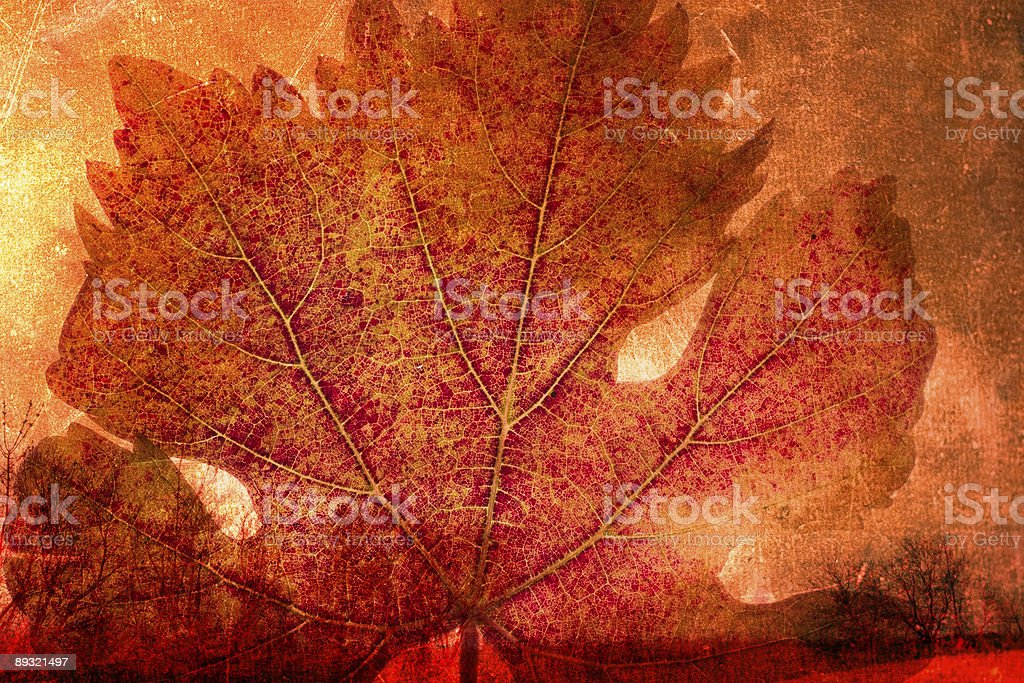 grunge autumn background royalty-free stock vector art