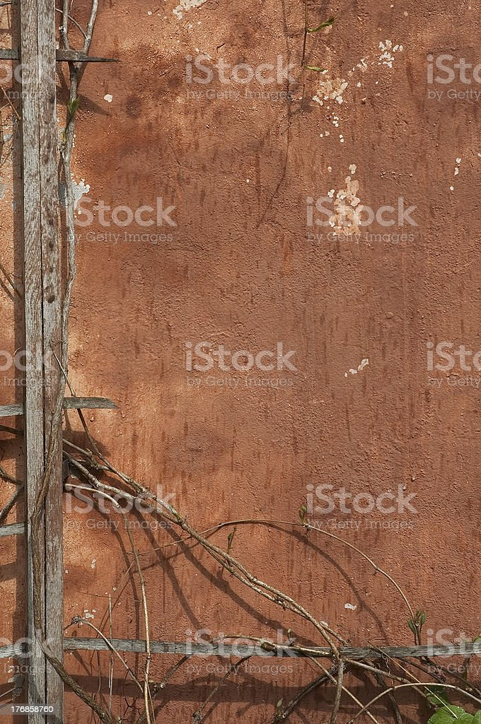 grunge background of old wall and branches royalty-free stock photo