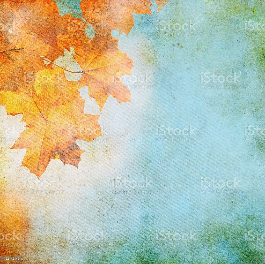 grunge background with autumn leaves vector art illustration