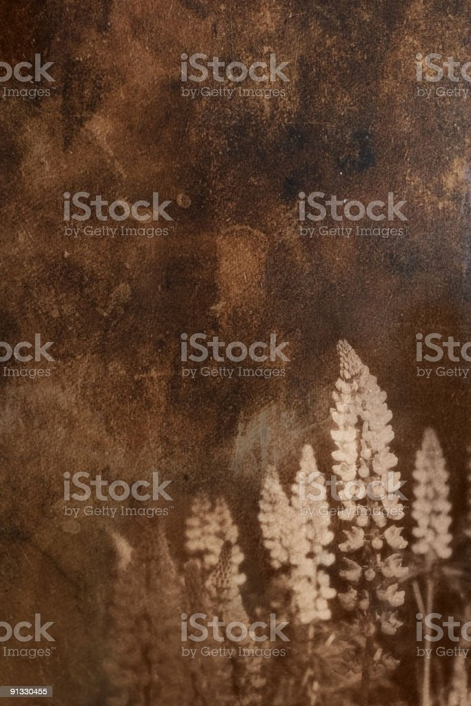 grunge background with floral ornament royalty-free stock photo