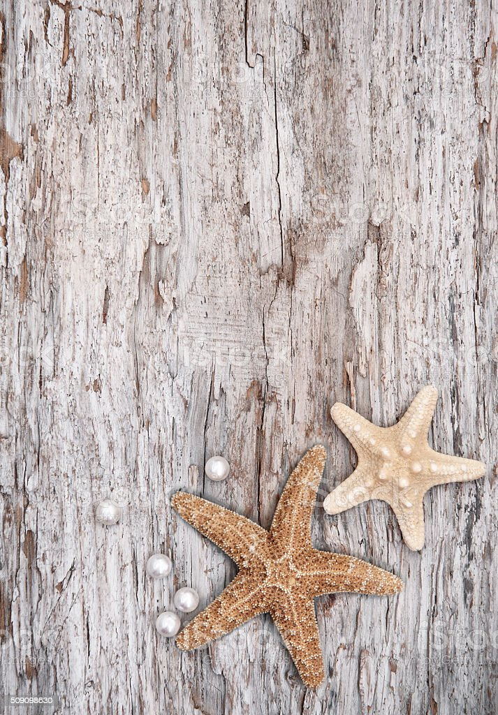Grunge background with seashells and pearls on the old wood stock photo