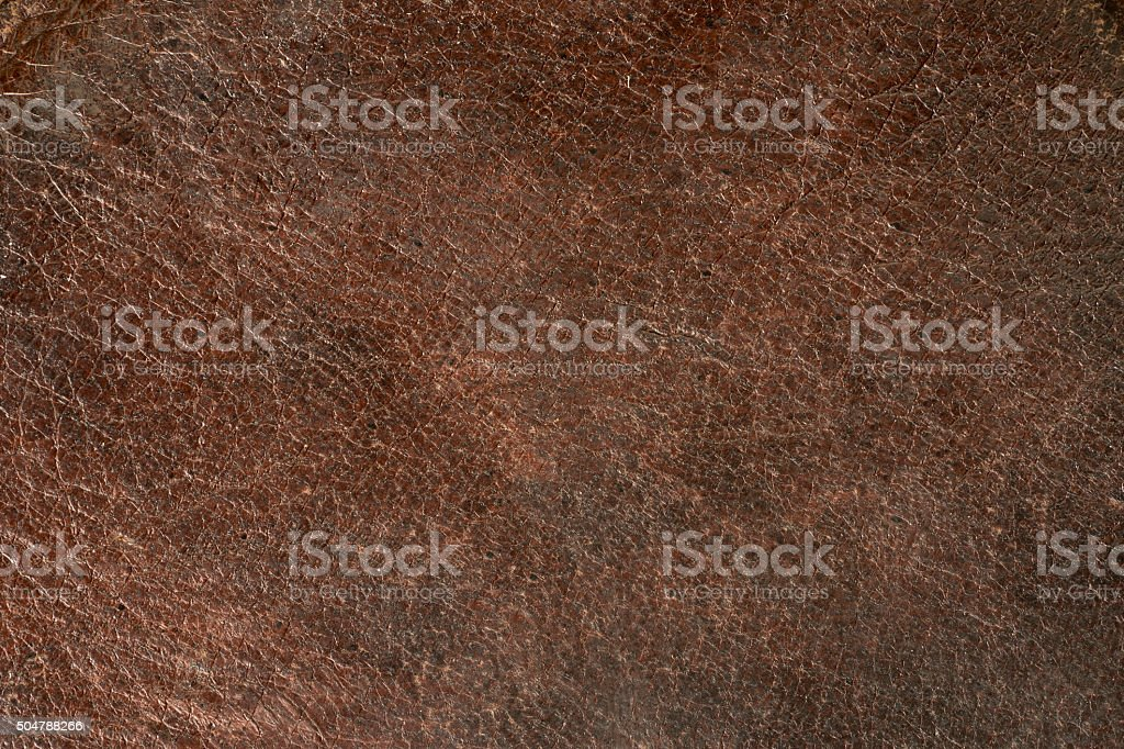 Grunge brown background. Old natural leather texture stock photo