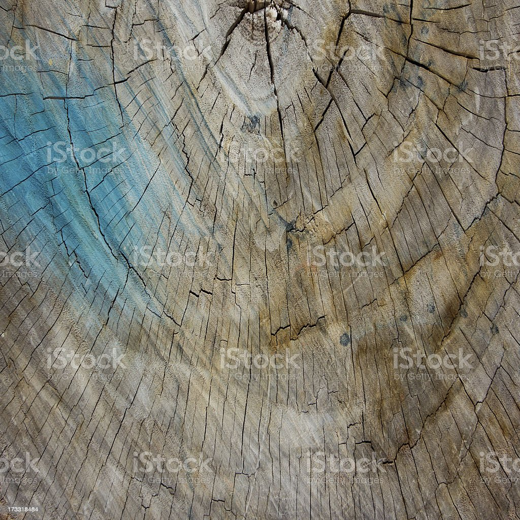 Grunge cut of wood texture for background royalty-free stock photo