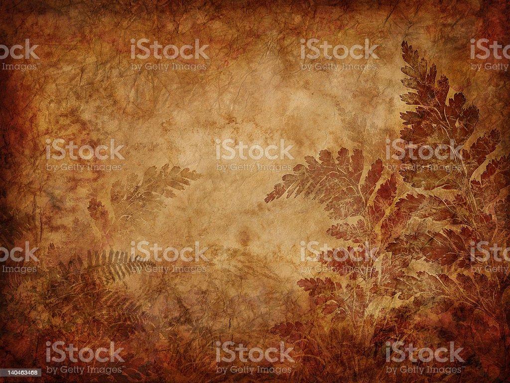 grunge fern background royalty-free stock photo