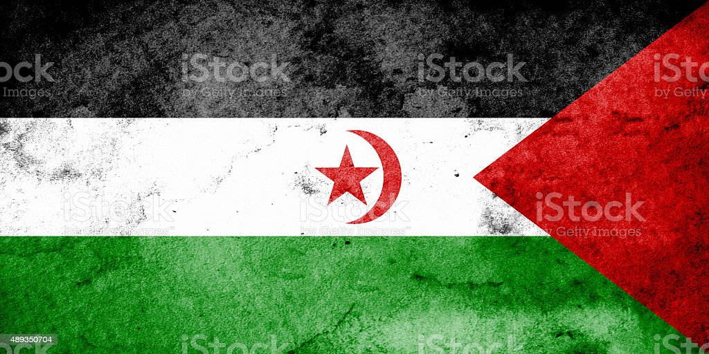 Grunge flag of SADR stock photo