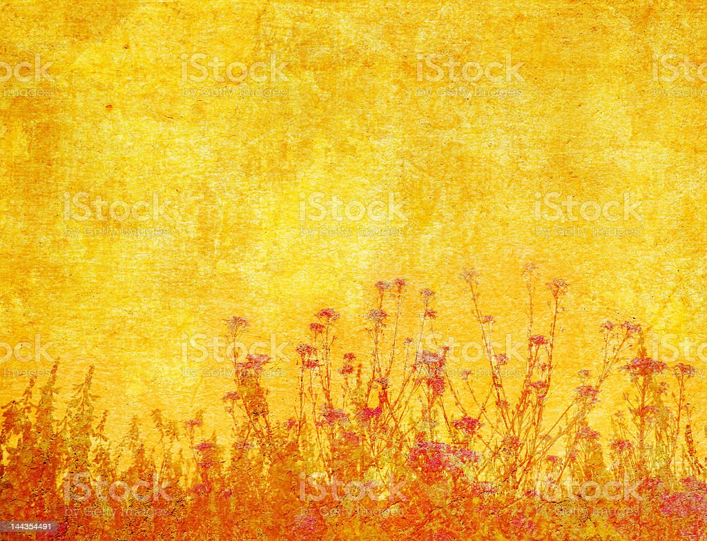 grunge floral background with space for text or image royalty-free stock photo