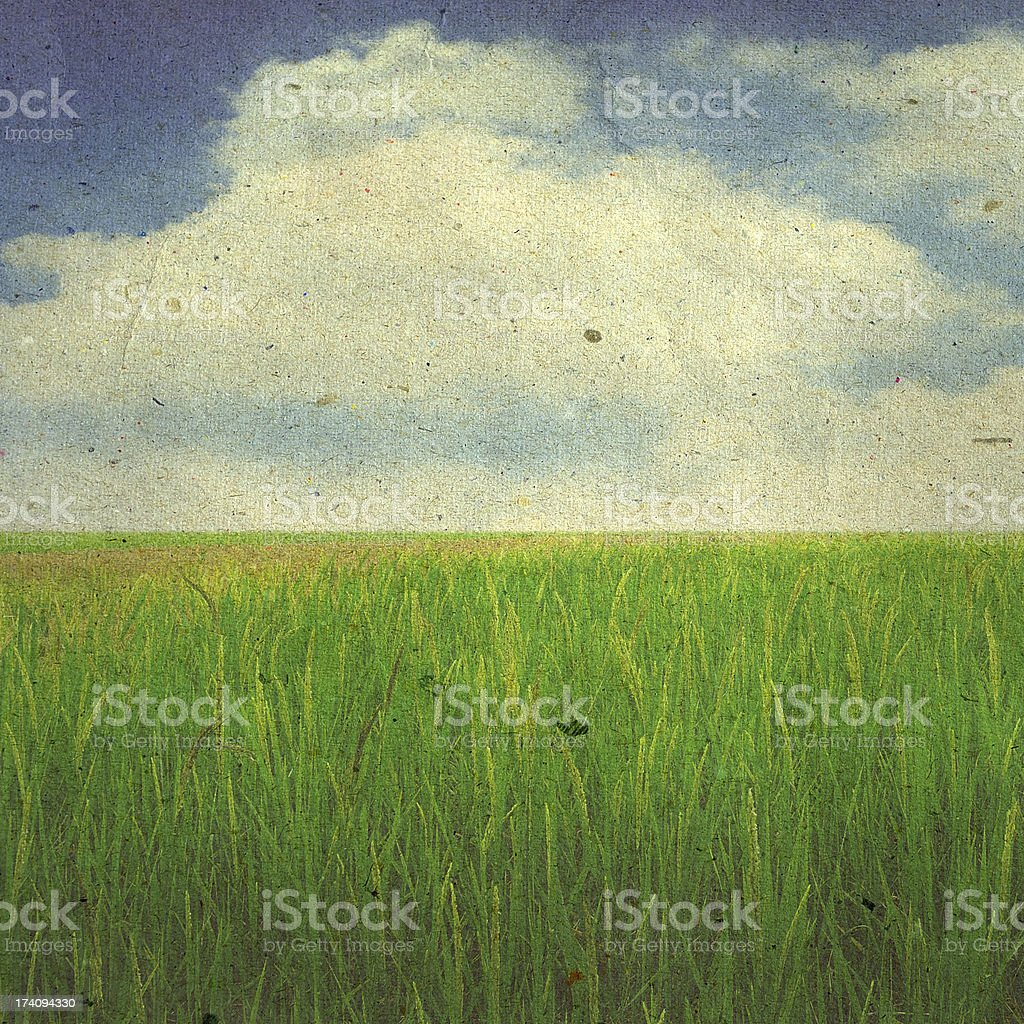 grunge image of a field royalty-free stock photo