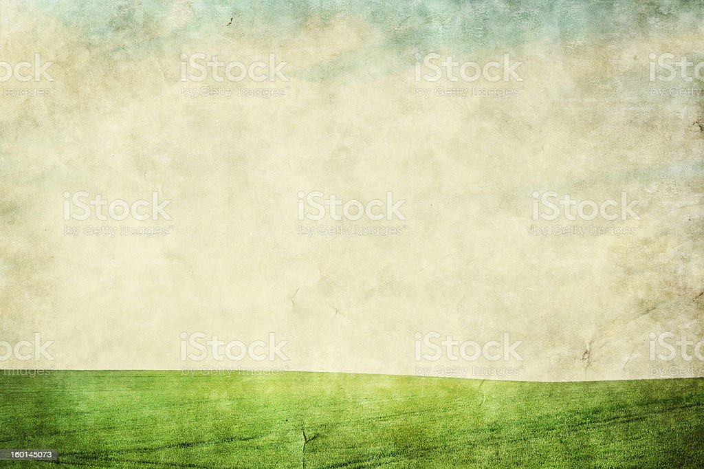 Grunge image of the summer meadow royalty-free stock photo