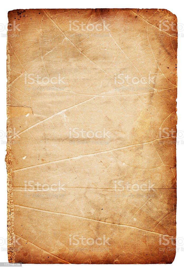 Grunge Leaf Paper XXXL royalty-free stock photo