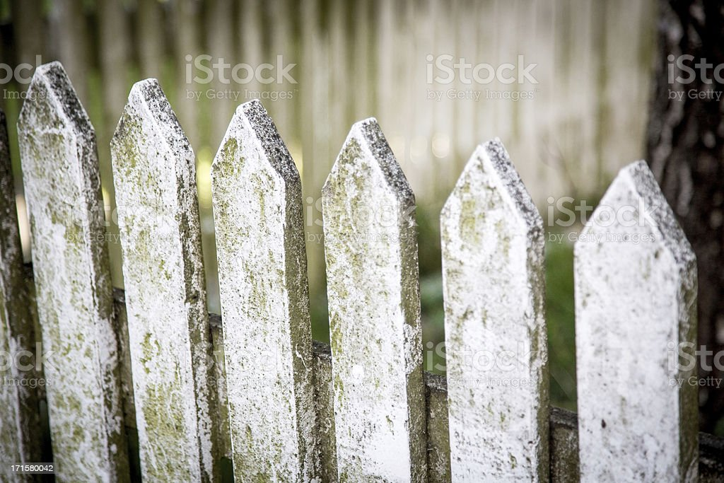 Grunge Picket Fence stock photo