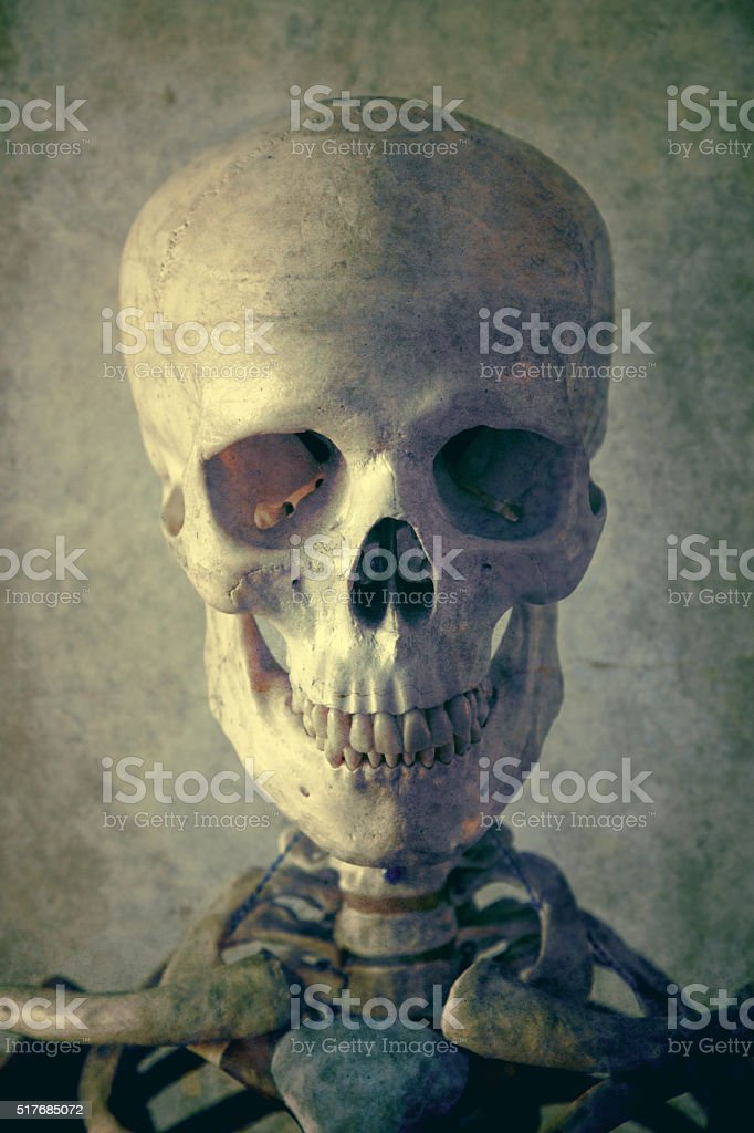 Grunge Portrait of a Skeleton stock photo