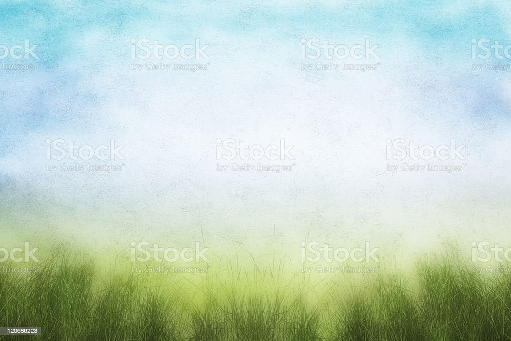 Grunge Spring Field royalty-free stock photo