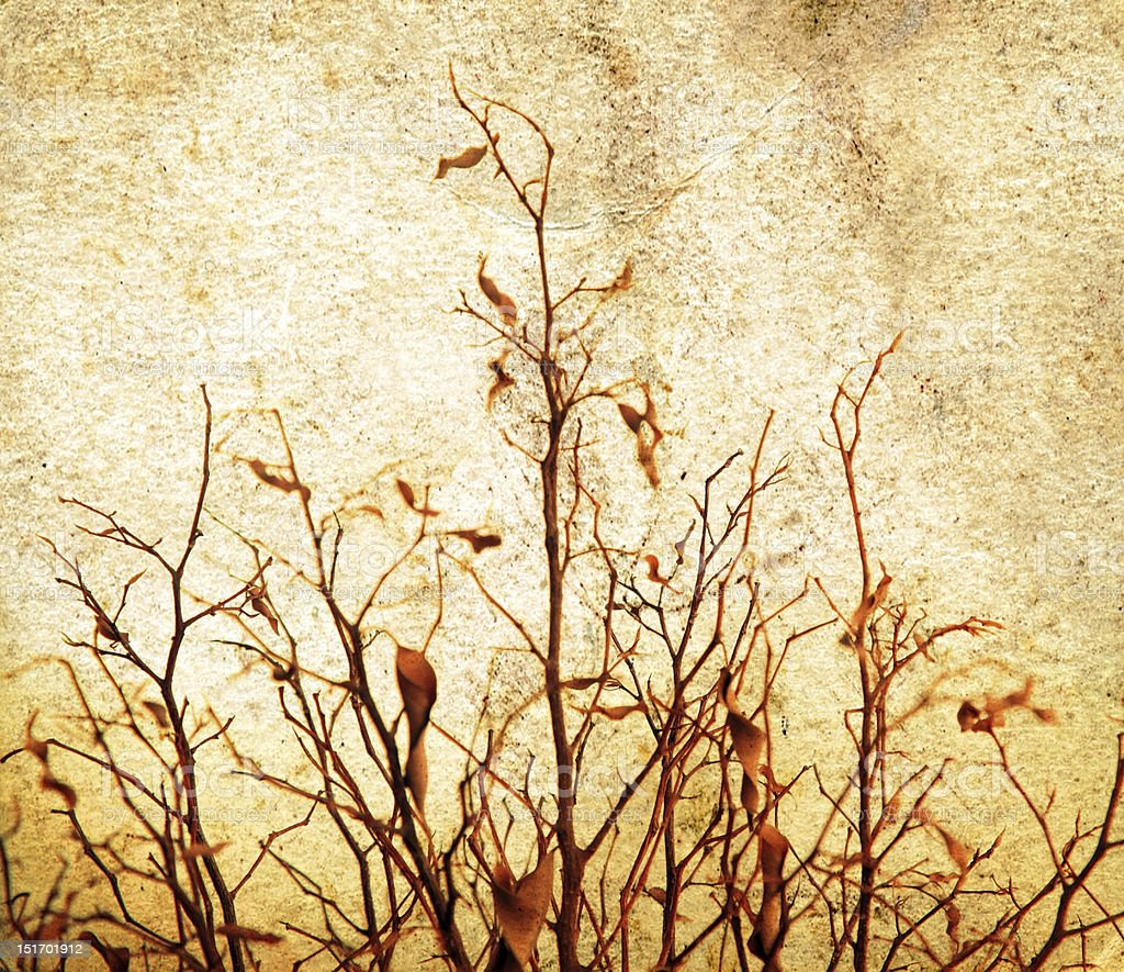 Grunge tree royalty-free stock photo