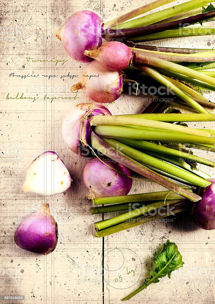 Grunge Vegetables I stock photo