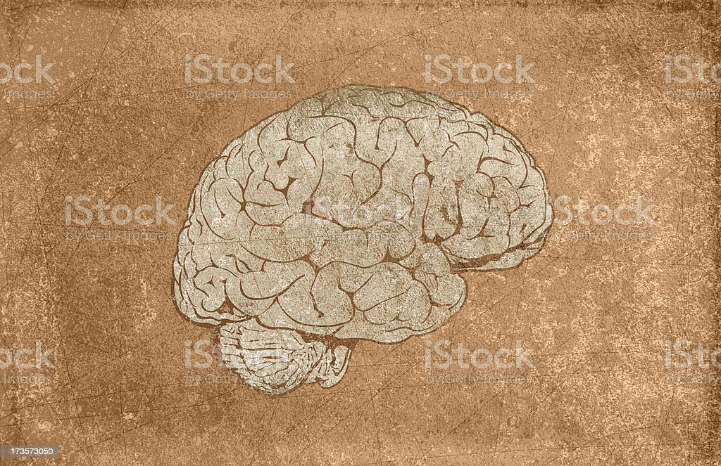 Grungy Brain royalty-free stock photo