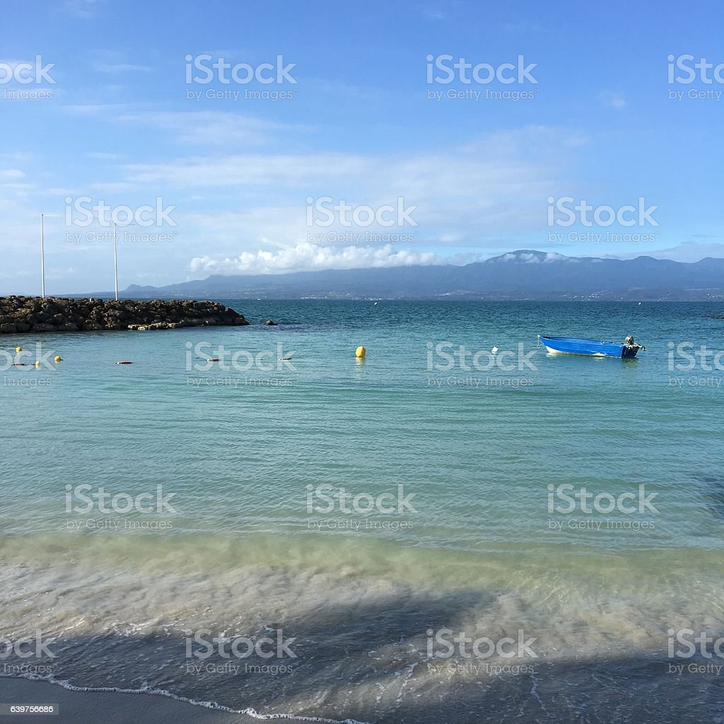 Guadeloupe Beach in Sunny Day with Palm Tree stock photo