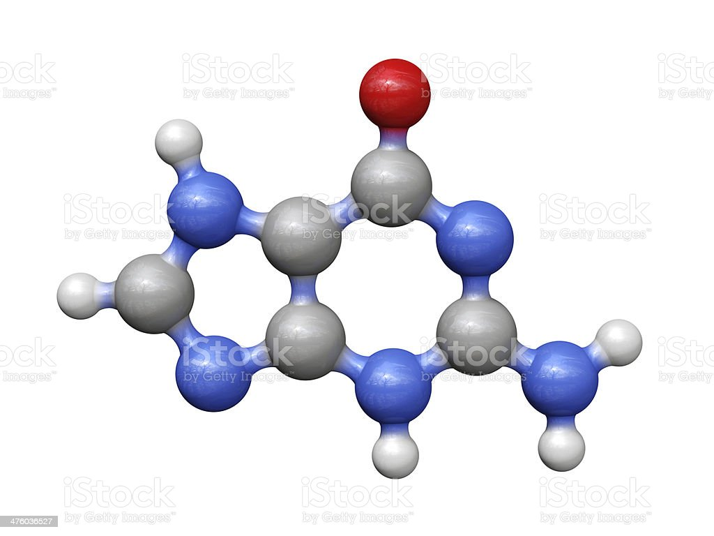 Guanine royalty-free stock photo
