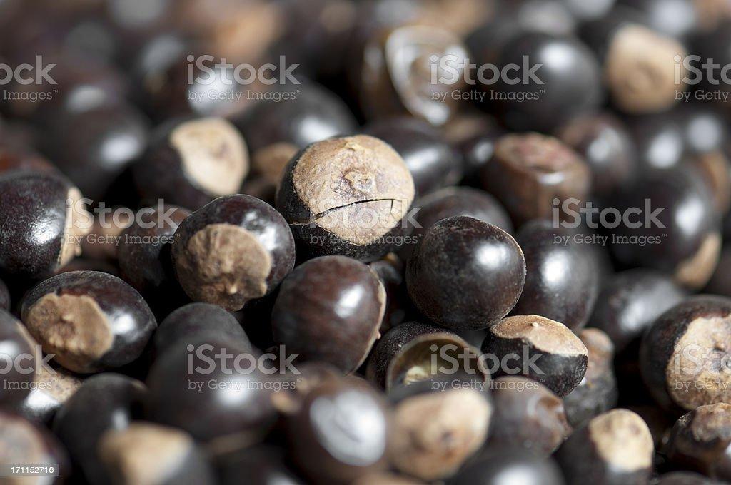 Guarana seeds stock photo